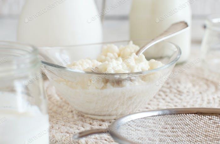 Kefir grains and  fermented drink kefir