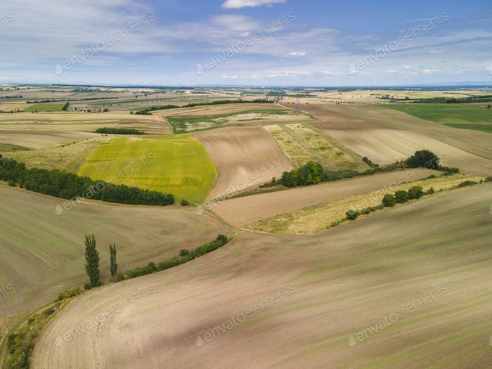 Agriculture Fields In Summer Season. Aerial Drone view