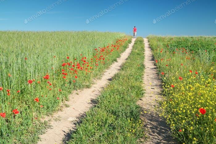 Mann zu Fuß auf grüner Wiese