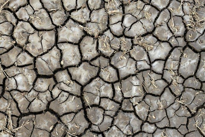 Trockene Bodenbeschaffenheit