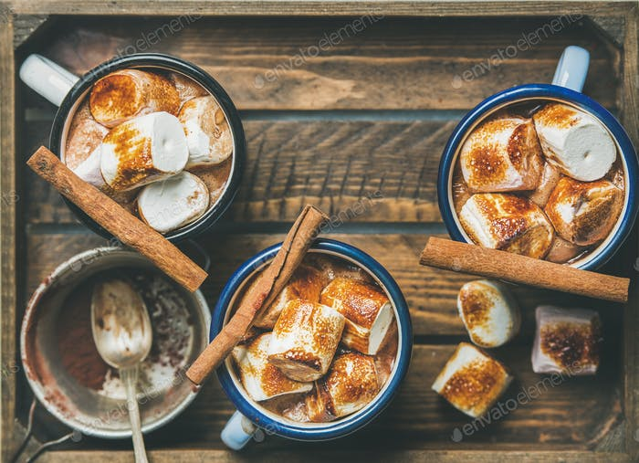 Hot chocolate with cinnamon and roasted marshmallows, copy space
