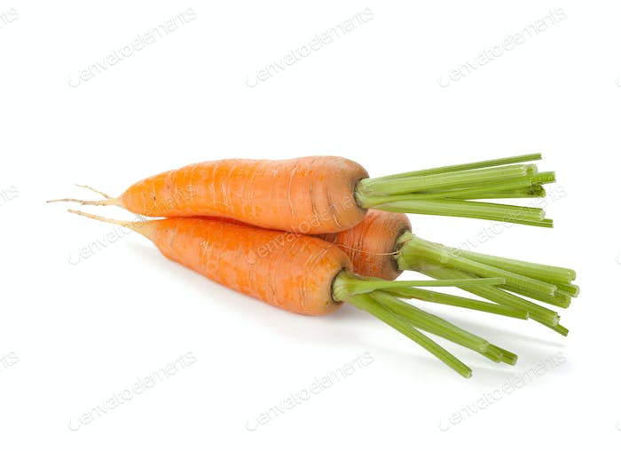 Fresh ripe carrots