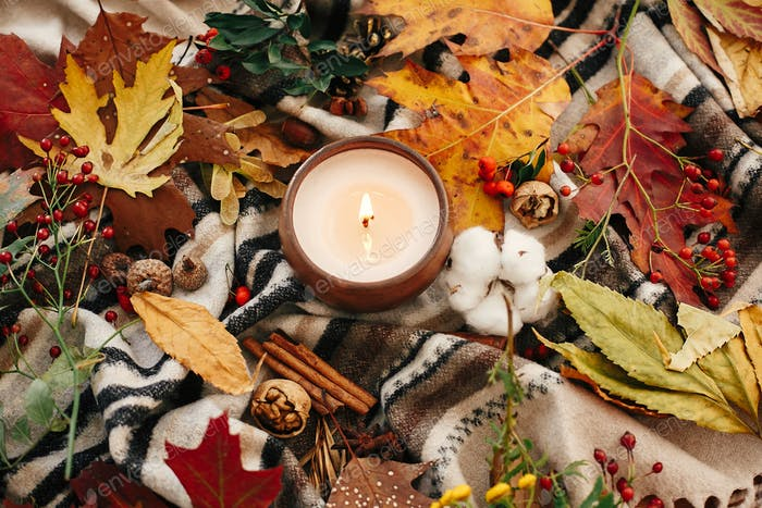 Hello autumn flat lay. Candle with berries, fall leaves, anise,herbs, acorns, nuts, cinnamon