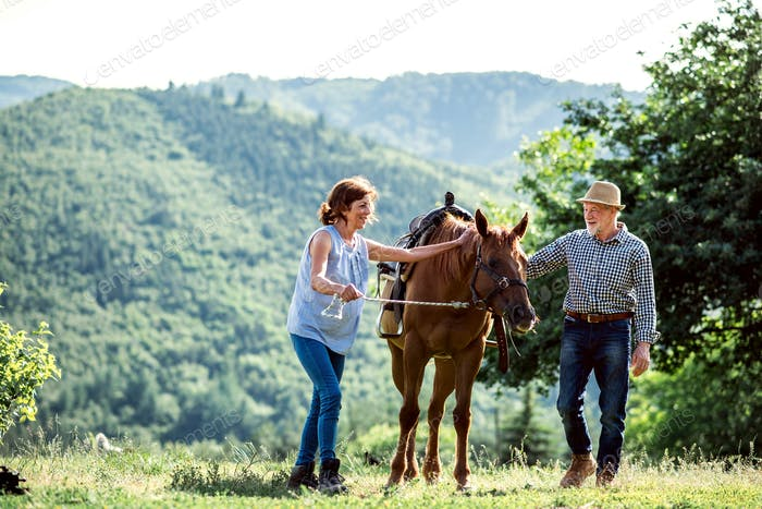 A senior couple holding a horse by his lead on a pasture.