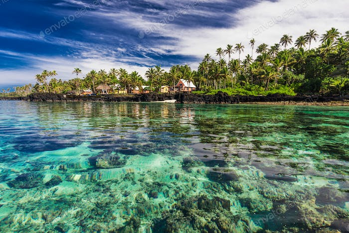 Coral reef lagoon with palm trees on the beach, south side of Up