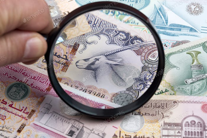 United Arab Emirates dirham in a magnifying glass