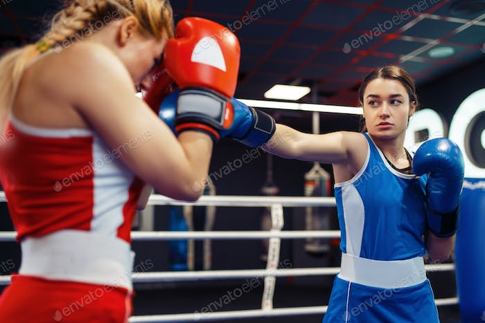 Women in gloves boxing on the ring, box workout
