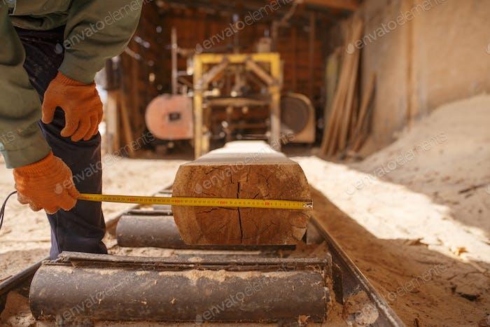 Holzarbeiter mit Maßband misst den Baumstamm