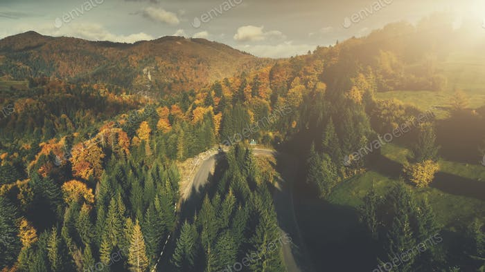 Colorful rocky landscape dense forest aerial view