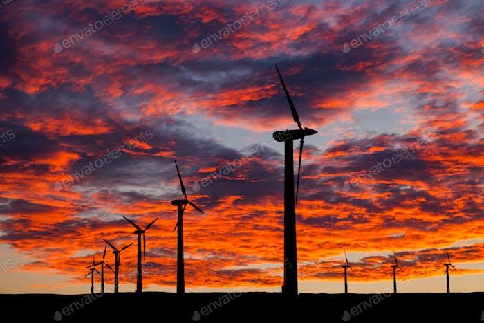 Silhouette der Windturbinen auf einem erstaunlichen Sonnenuntergang