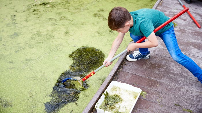 Boy On Outdoor Activity Camp Catching And Studying Pond Life