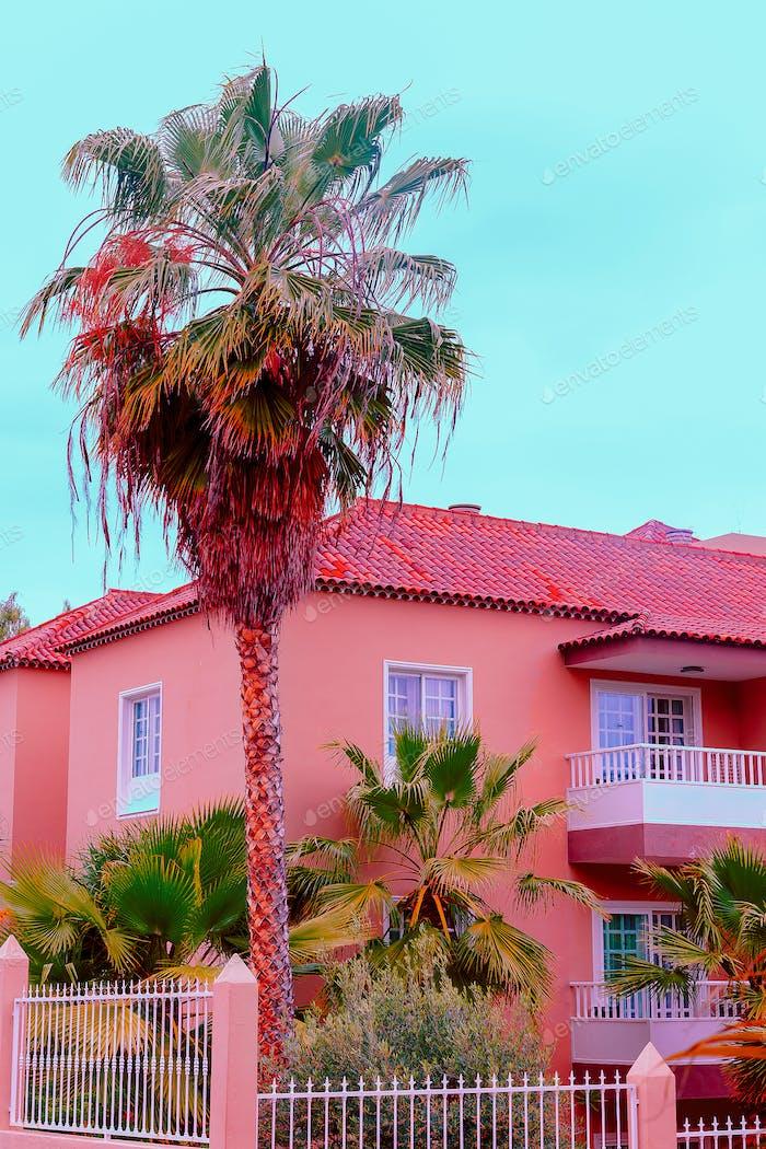 Tropische Lage. Kanarische Insel. Pink Palm Mood