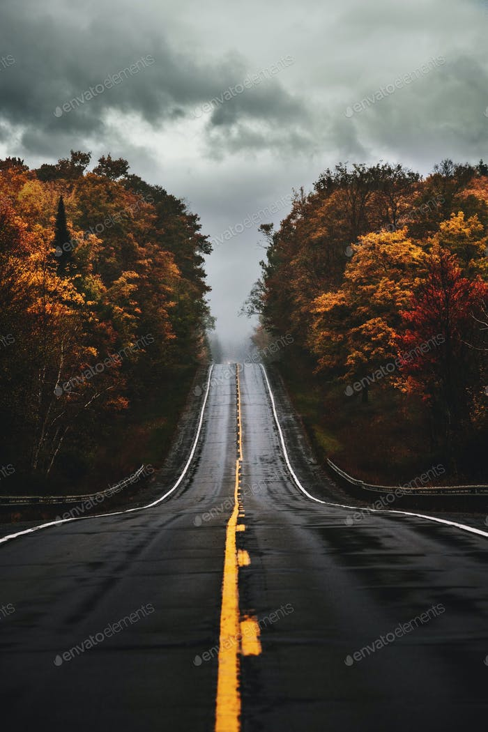 All roads lead to fall
