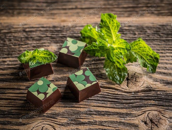 Csoki 213