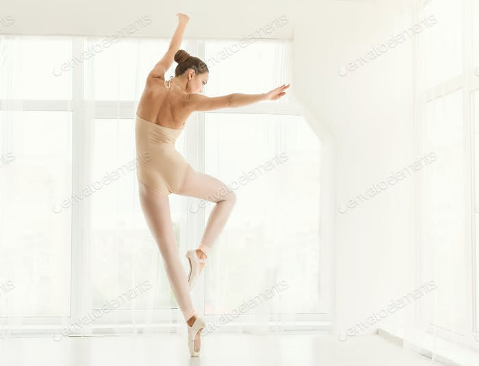 Professional ballet dancer