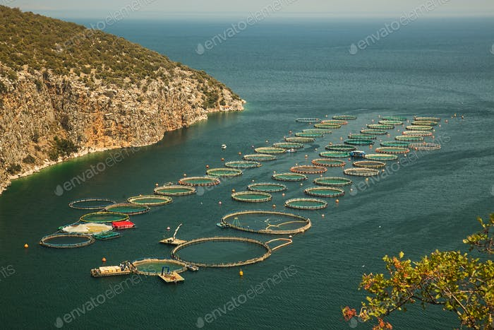 Fish farm cages on bay in Mediterranean sea, Greece