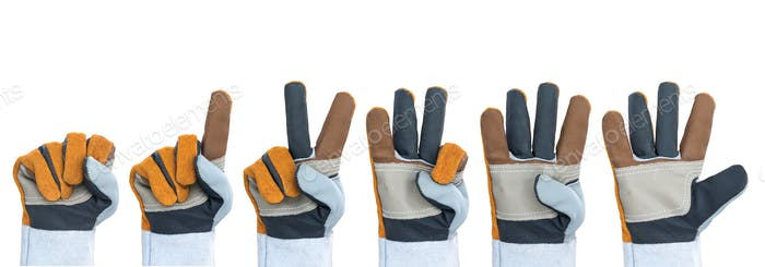 Set of working hand in rough leather glove