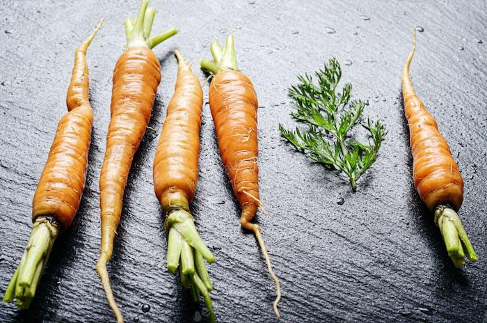 Fresh organic baby carrots on slate stone tray