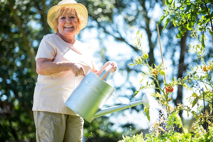 Senior woman watering plants with watering can in garden