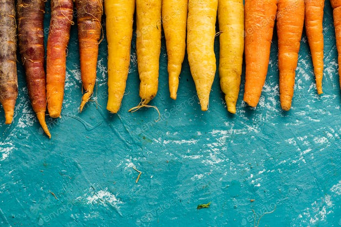 Colorful Carrots Roots. Farm Fresh Food Background