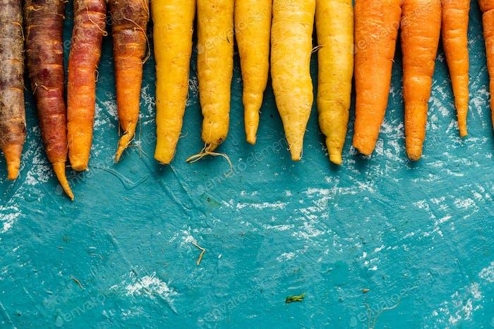 Bunte Karotten Wurzeln. Bauernhof Frischfutter Hintergrund