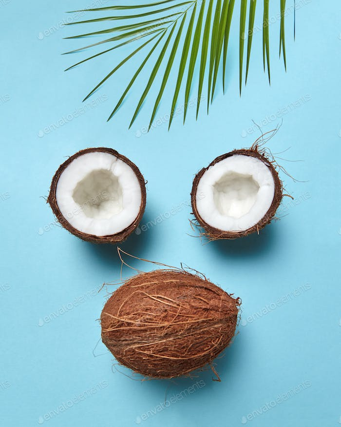 Composition from coconut and palm leaf in the form of a face on a blue background with copy space