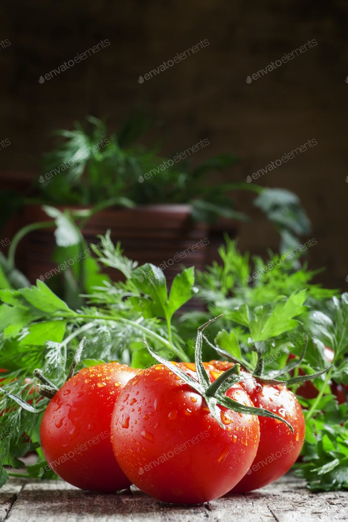 Wet red tomatoes, herbs, close-up
