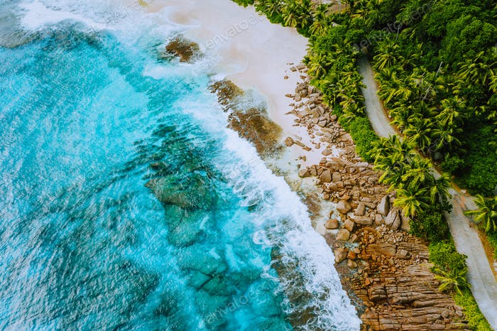 Seychelles Mahe island aerial drone landscape of coastline paradise sandy beach with palm trees and