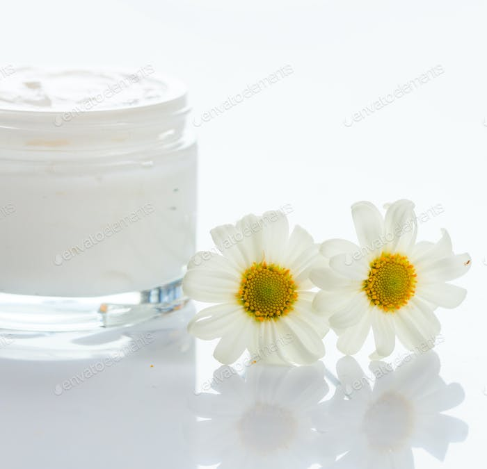 Moisturizing cream and chamomile on white background. Open glass container with camomile cosmetic