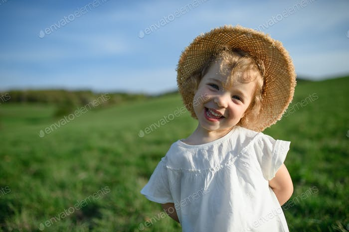 Small toddler girl standing on meadow outdoors in summer, looking at camera