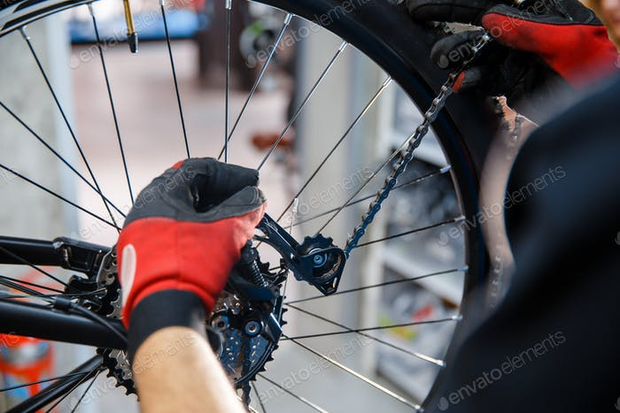 Bicycle repair workshop, man sets the speed switc