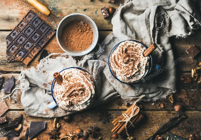 Hot chocolate with whipped cream, cinnamon, nuts and cocoa powder