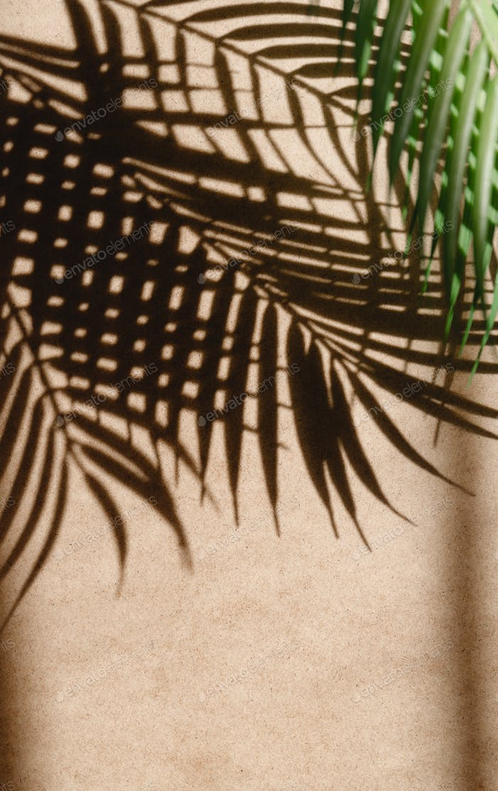 Tropics minimalist abstract blurred background of palm leaf shadow over kraft paper.