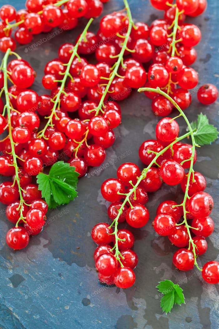 Red currant on stone plate