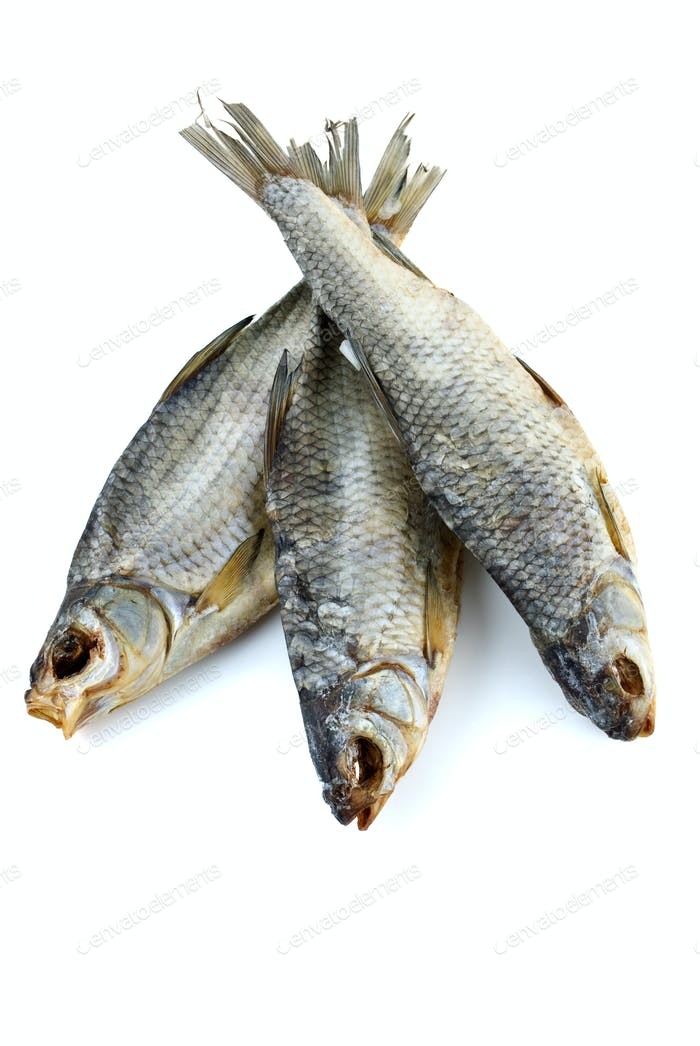 Three dried sea roach fishes