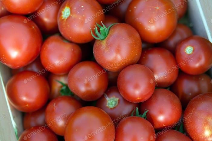 Bild von vielen Tomaten in Holzkiste