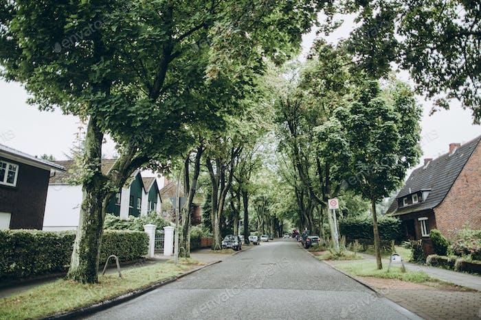 городская сцена улицы с зелеными деревьями и зданиями в Гамбурге, Германия