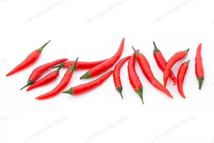 Chilischote auf dem weißen Hintergrund.