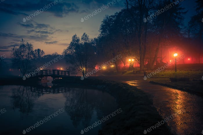 City Park Reflections at Night