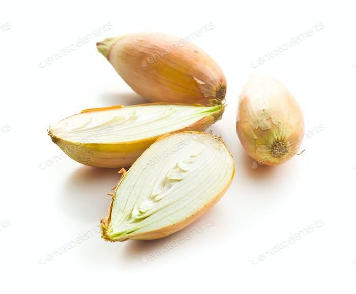 Die goldene Schalotte Zwiebel. Halbierte frische Zwiebeln