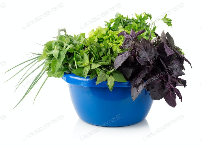 Thumbnail for Greens in a bowl