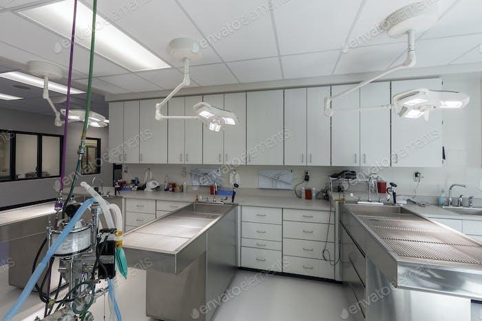 54324, Untersuchungstische im leeren Tierkrankenhaus