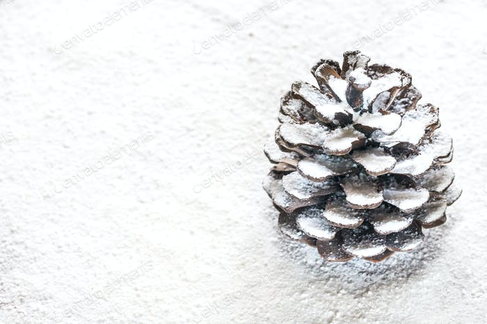 Pinecone on the white background
