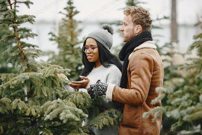 Mixed couple choosing a christmas tree