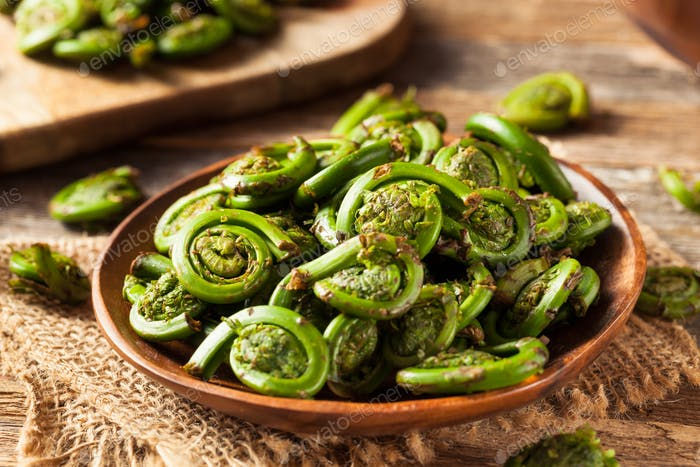 Raw Organic Green Fiddlehead Ferns