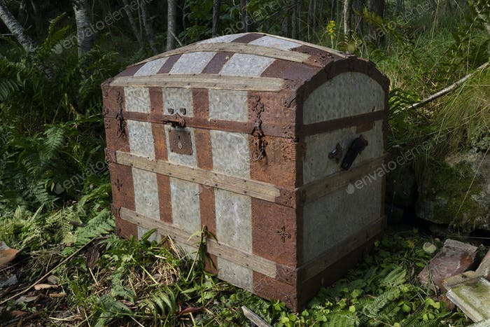 Old  mysterious rusty chest