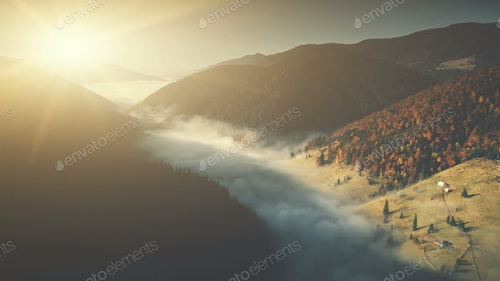 Deep wild wood mountain foggy slope aerial view