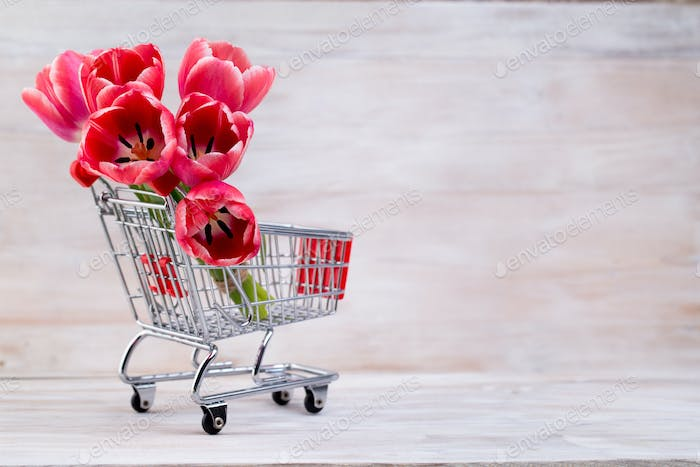 Pink tulips, spring flowers and Easter decoration.