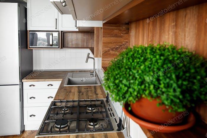 Интерьер кухни с современными шкафами и зелеными растениями