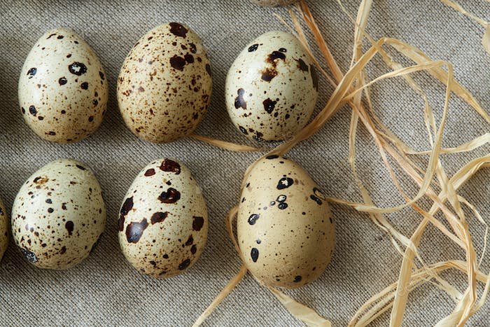 Flatview of quail eggs on linen fablic background